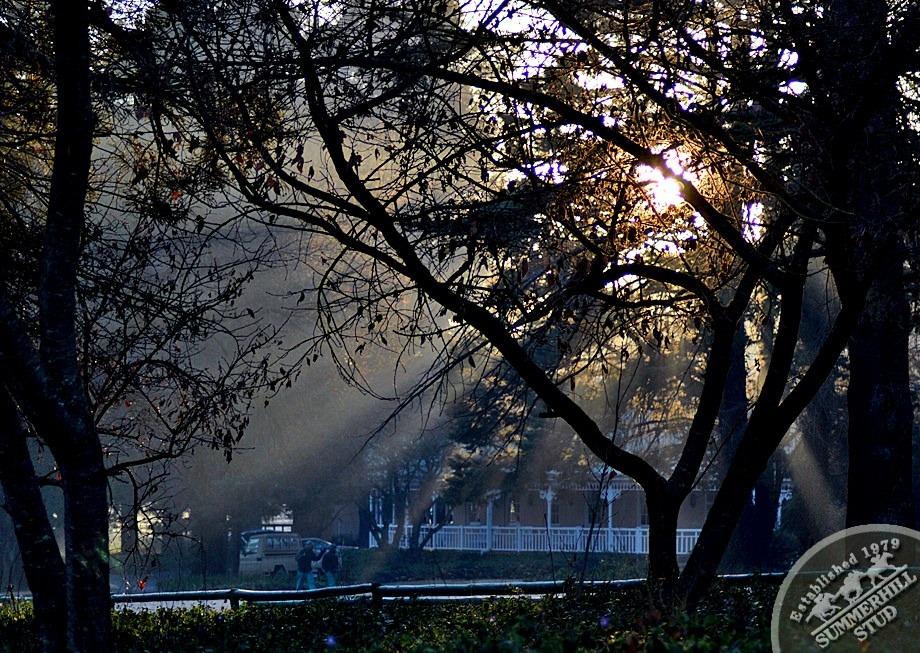 1-winter-day-kzn-midlands.jpg