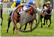 criterion stakes video link