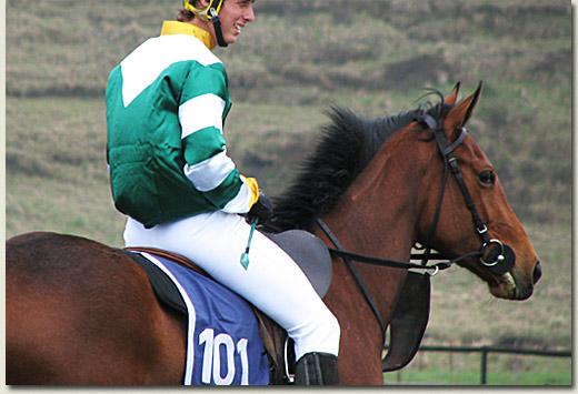 summerhill breeze up gallops