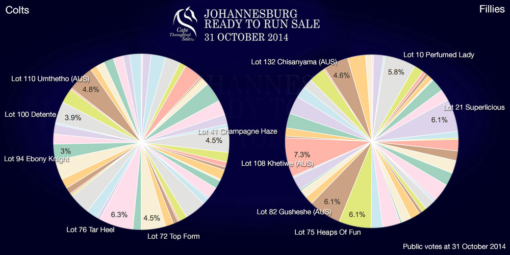 Johannesburg Ready To Run Sale Public Vote 31 October 2014