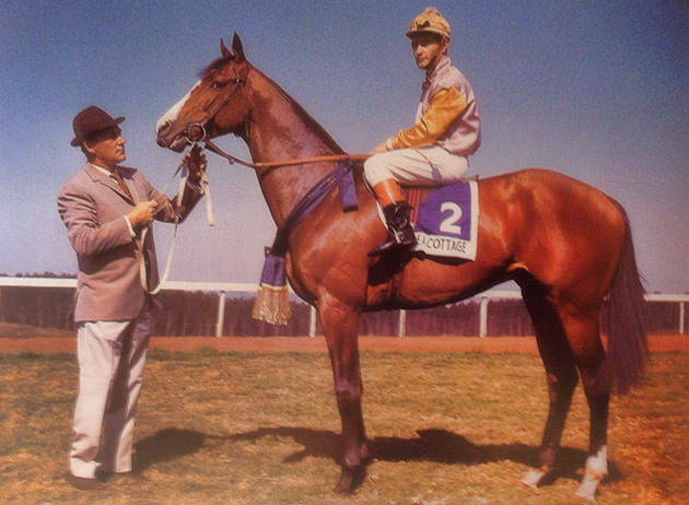 Syd Laird with Sea Cottage / Durban Turf Club (p)