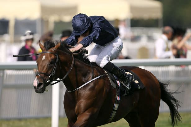 War Envoy winning the Britannia Stakes