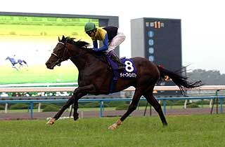 Deep Impact / Japan Racing (p)