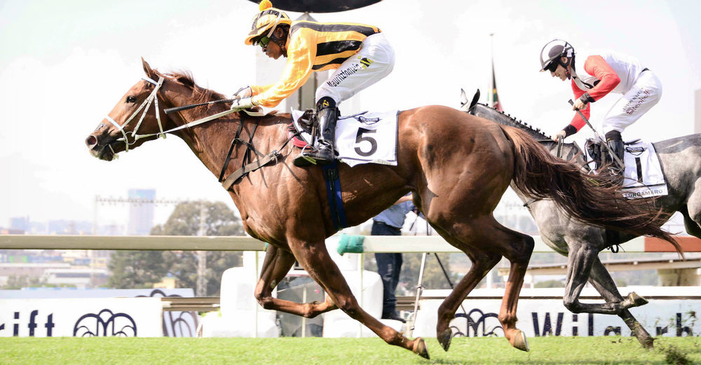 Heaps Of Fun wins the Wilgerbosdrift Gauteng Fillies Guineas / JC Photos (p)