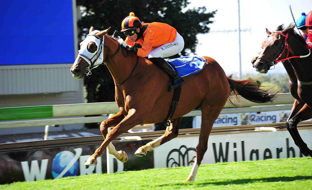 arch-rival-horse.jpg