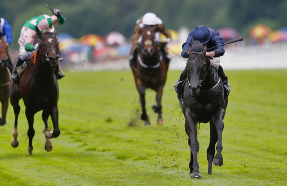 Caravaggio - Coventry Stakes (Group 2) / Sportinglife (p)