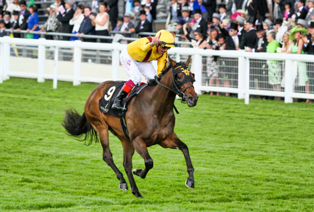 Lady Aurelia - Queen Mary Stakes (Group 2) / Thoroughbred News (p)