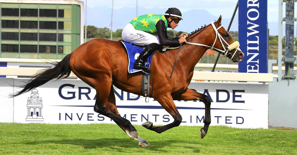Act Of War / Summerhill Stud (p)