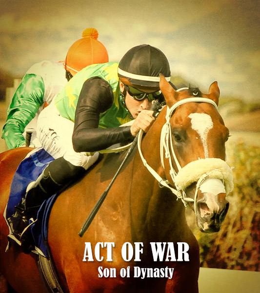 Act Of War - Dynasty