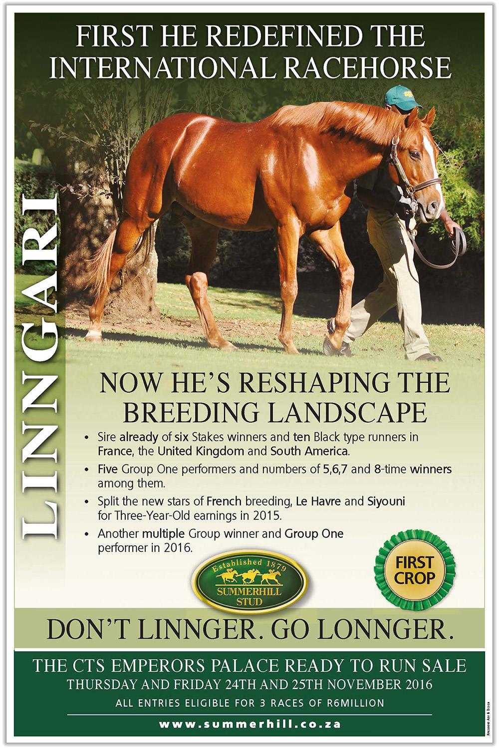 Linngari - Ready To Run Sale