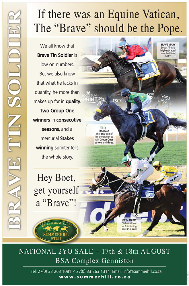 Brave Tin Soldier - National 2-Year-Old Sale