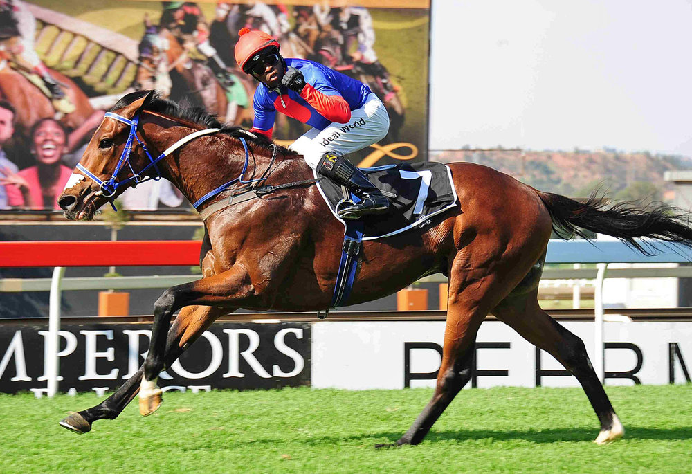 Big Bear wins the Emperors Palace Ready To Run Cup / JC Photos (p)