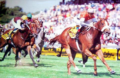 Senor Santa / Computaform Sprint Gr1 (1993)