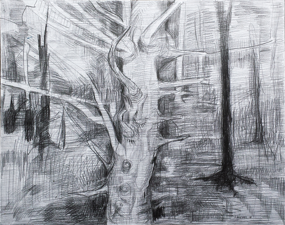 Study for Portrait of a Tree