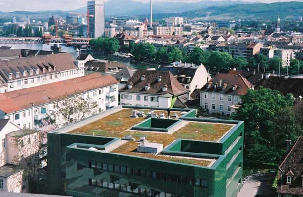 19-laban-dance-centre-london-courtesy-of-livingroofs.org.jpg