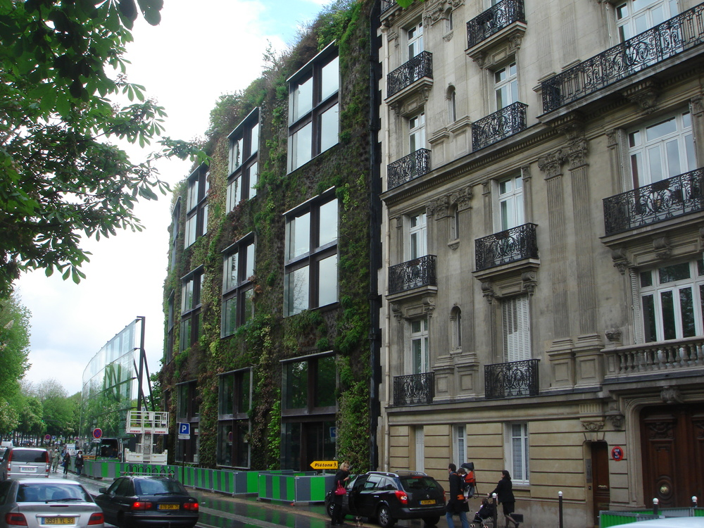 05 Quai Branly, Paris living wall photograph courtesy of Zoe Zimmerman.JPG