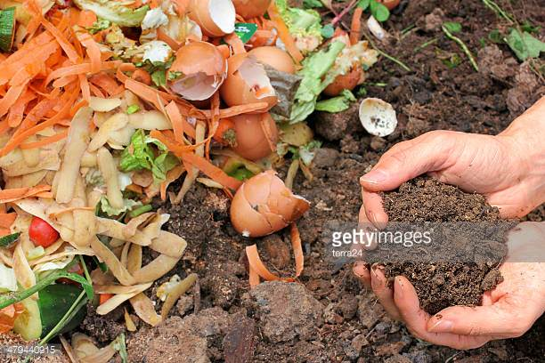 - Why Care about food waste?