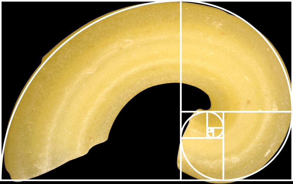 Macaroni Golden Ratio