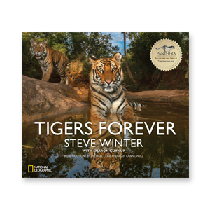 "BOOK  ""Tigers Forever"" photographed by Steve Winter"