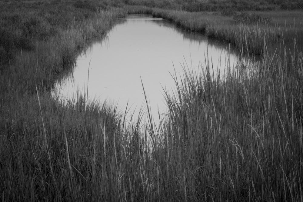 Marsh ditch