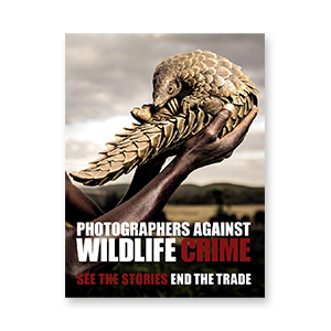 "BOOK  ""Photographers Against Wildlife Crime"" by Britta Jaschinski and Keith Wilson"