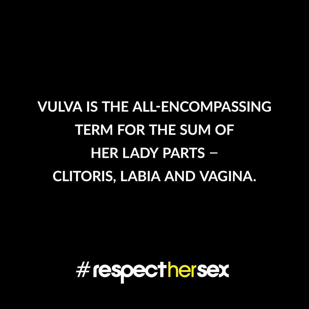 FACT 4: Vulva is the all-encompassing term for the sum of her lady parts - clitoris, labia and vagina.   Source