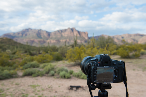 This is a photo before edit taken in Lost Dutchman State Park, Phoenix, AZ.