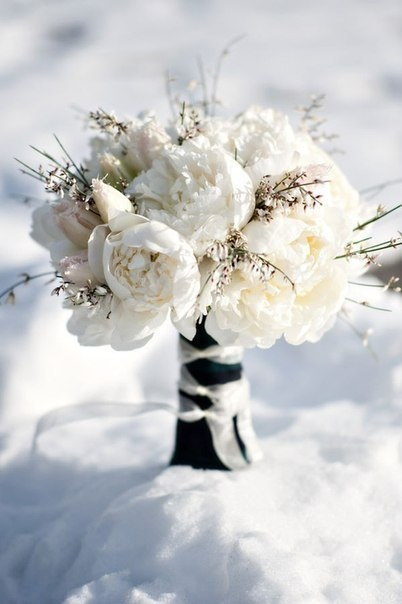 A winter bouquet