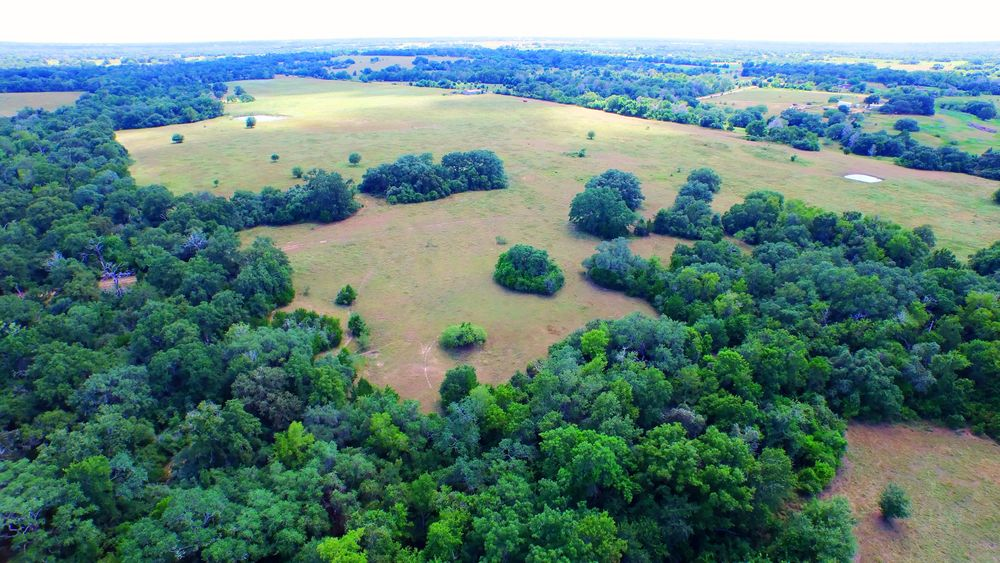 back land facing front.jpg