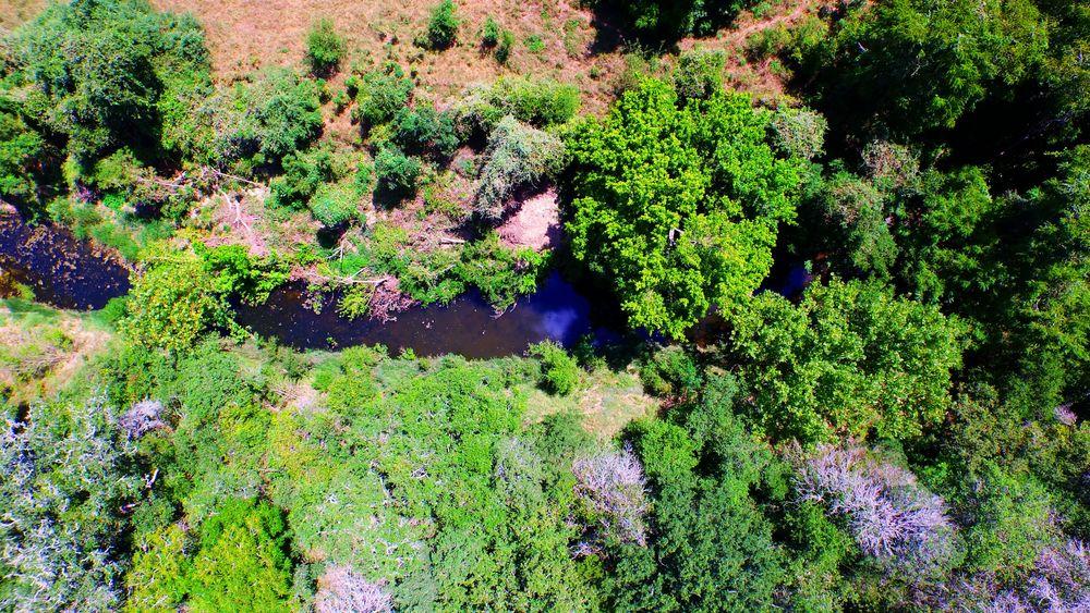 creek top.jpg