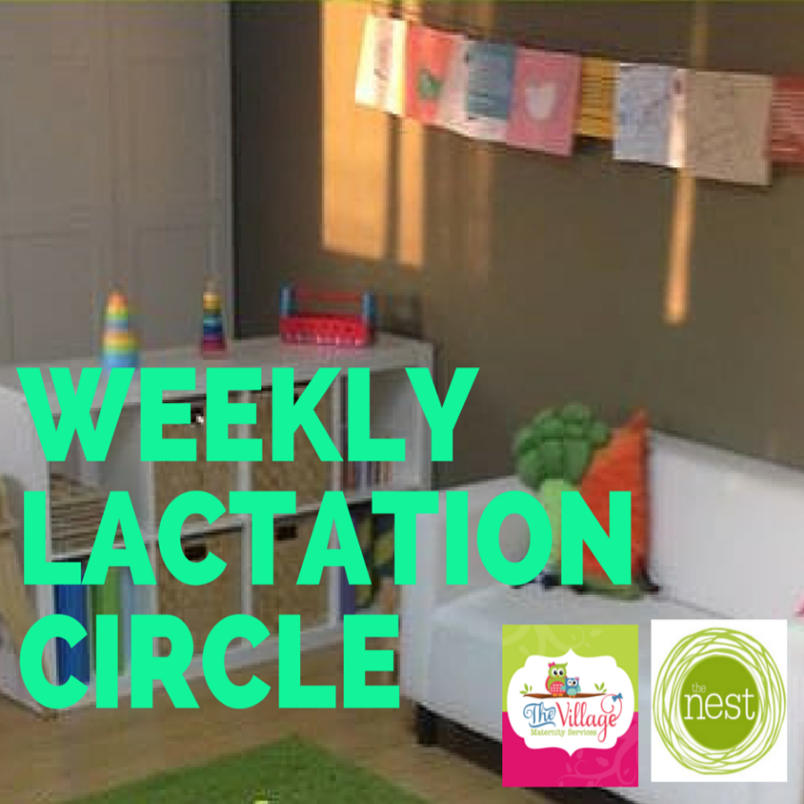Lactation Support Group Nicole Vascianna Lina Acosta The Village Maternity Services Nest Emotional Wellness Center Miami Childre.png