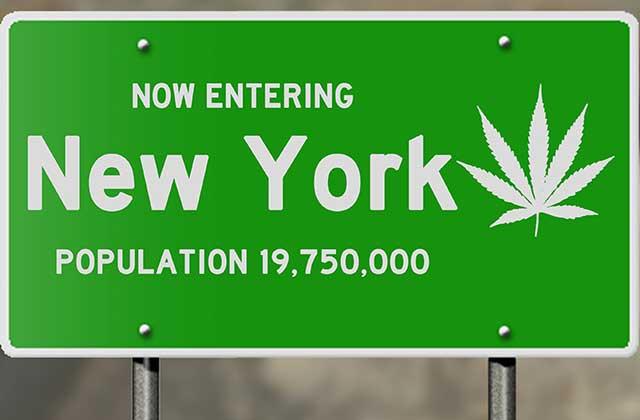 NewYork-MedicalMarijuanaProgram.jpg