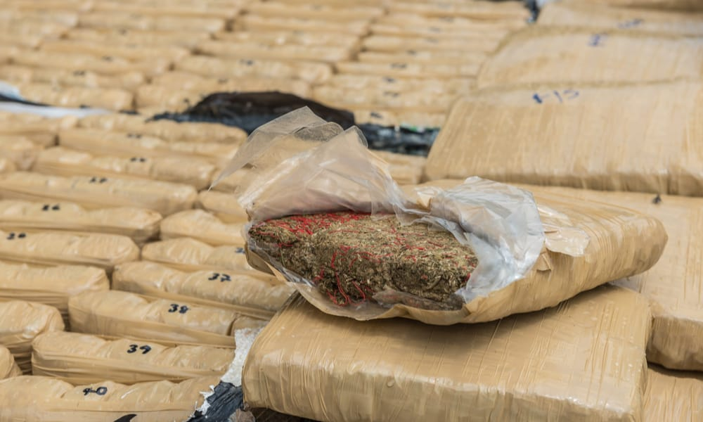 officials-seize-pounds-of-pot-at-border-hero.jpg