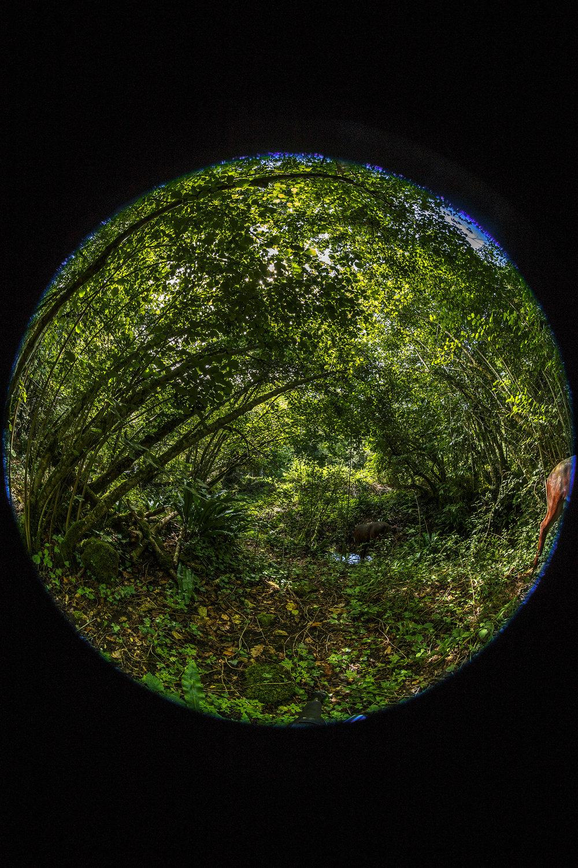 creer-une-visite-virtuelle.com_HDR_Roc_de_cazelle-11.jpg