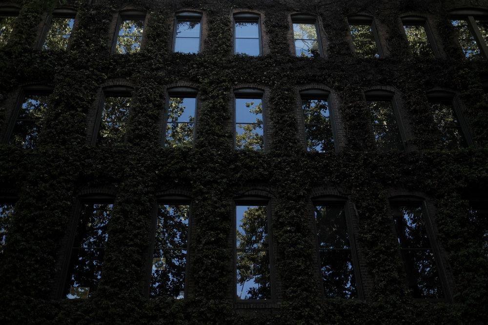 Reflections. Seattle, USA.