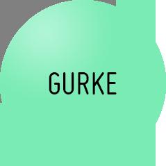 Gurke_get-hungry.com