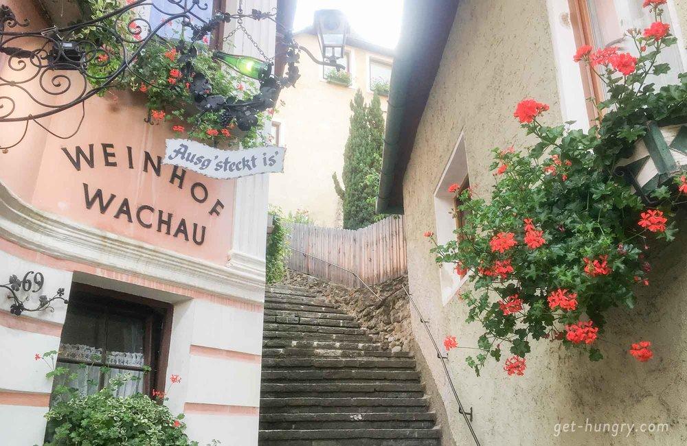 """Ein heißer Tipp in Weißenkirchen ist der Heurige der Familie """" Trautsamwieser """". Dort muss man sich jedoch rechtzeitig einen Tisch unter der Wein-Laube reservieren."""