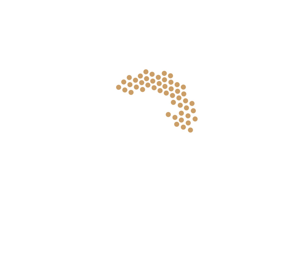 get_hungry_snacks_icon_weiß.png