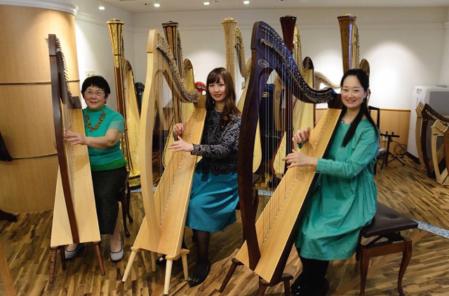 The Rainbow Irish Harp Ensemble