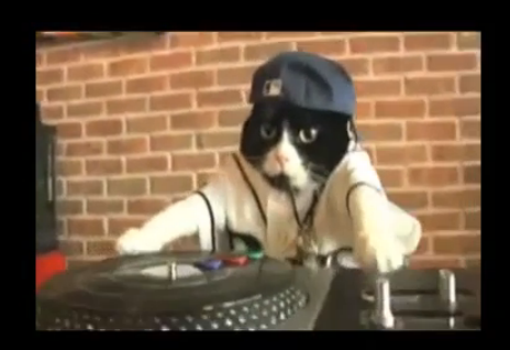 DJ_Kitty