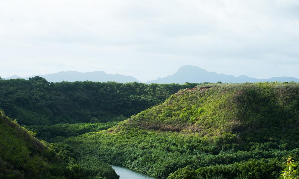 Kauai 01.jpg