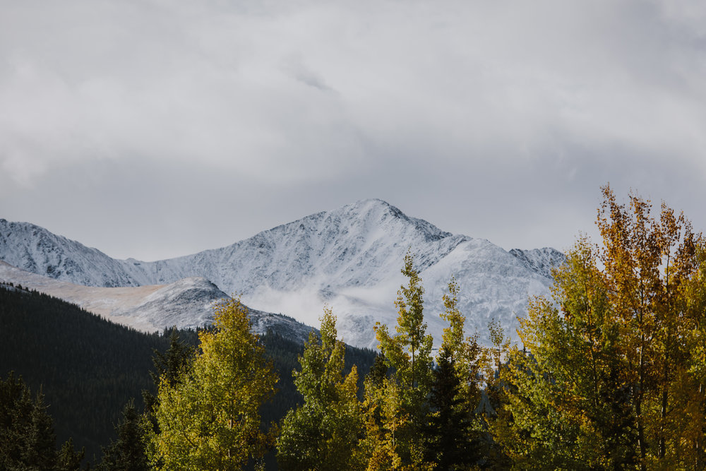 CO 23.jpg