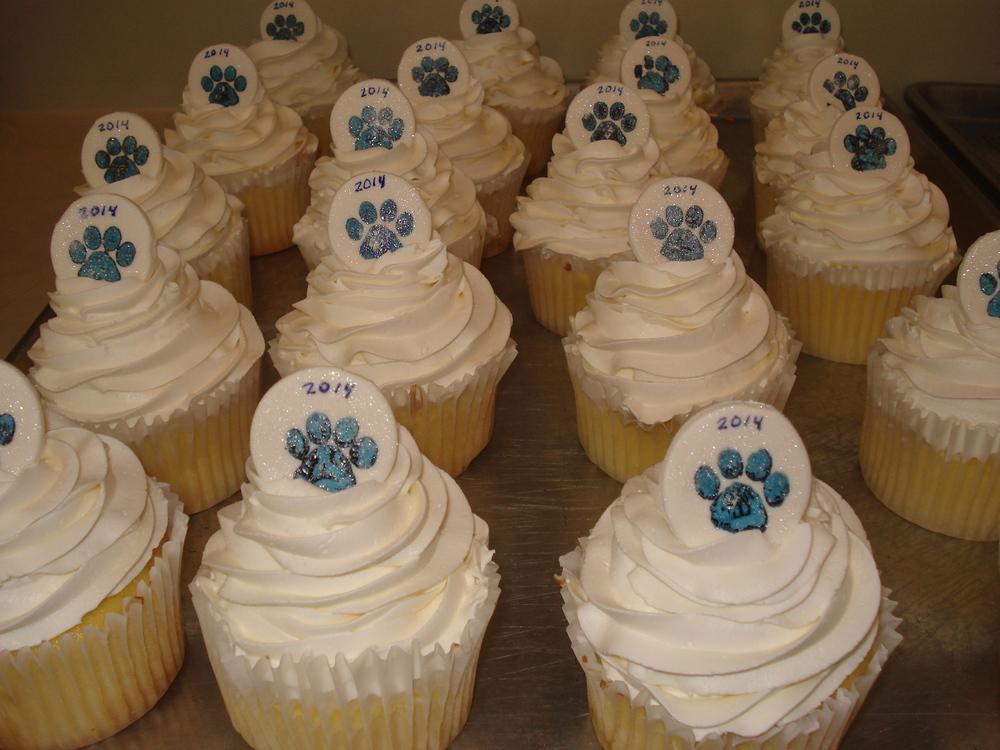 UCONN Husky Cupcakes