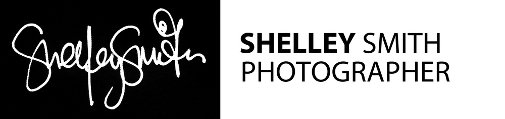 Shelley Smith Photographer. Weddings + families. Norfolk County, London, Toronto and everywhere in between.