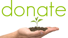 Donate / Tithe Online