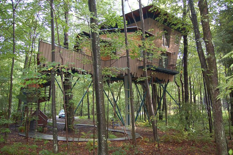 tn_Treehouse in the woods.jpg