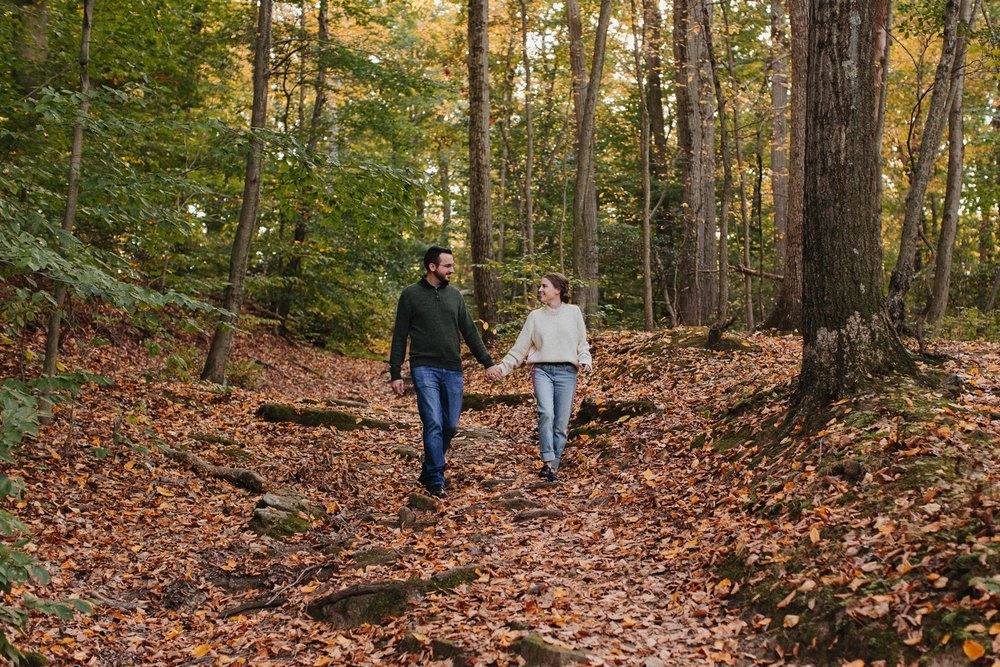 0003_17_10_22_steph_tim0038_woodsy,_fall,_nature_field,_engagement,.jpg