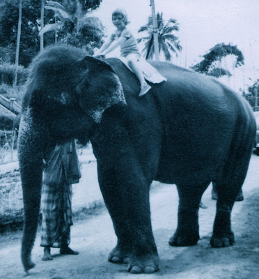 The elephants were real and I was fearless at four! (Kandy, Sri Lanka)