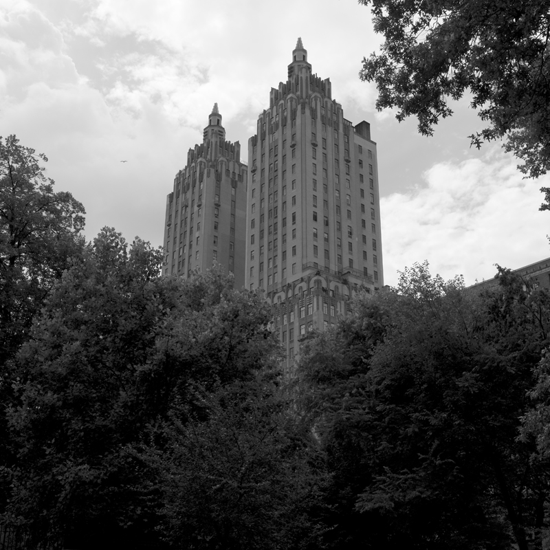 buildings from park.jpg