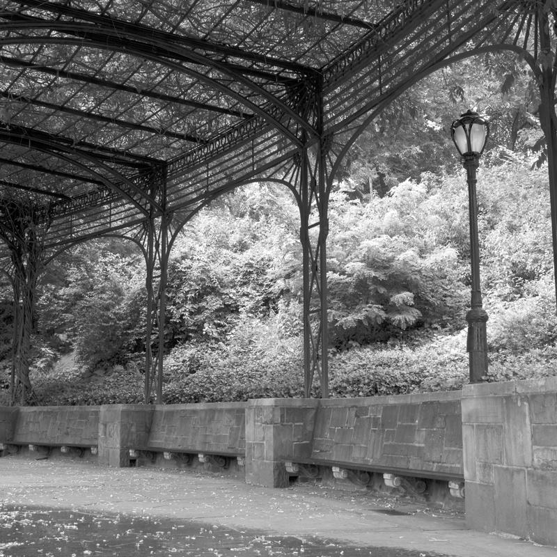 garden benches nyc.jpg